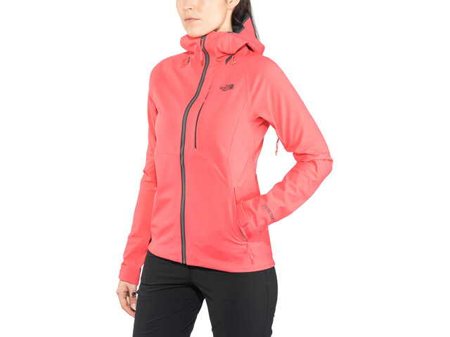 The North Face Apex Flex GTX 2.0 Jacket Women atomic pink/atomic pink